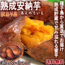 産地直送 安納芋 あんのういも さつまいも 約5kg S~Lサイズ 鹿児島県・種子島産 訳あり品 減農薬で育てた美味しい蜜芋!お得なサイズ混合規格