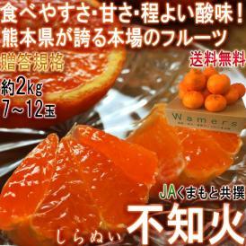 不知火 しらぬい 約2kg 7玉~12玉 熊本県産 露地栽培 光センサー認証 本場で育てた濃厚な甘酸っぱさ!デコポンと同品種のタンゴール