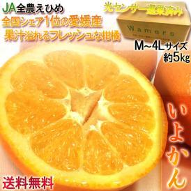 伊予柑 いよかん 愛媛産 約5kg M〜4Lサイズ 光センサー選果 生産量トップ3の柑橘 濃厚な味わいの果物