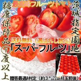 トマト フルーツ 茨城県産 スーパーフルーツとまと 約3kg 糖度センサー選別9度以上 出荷組合品 贈答用 化粧箱 糖度 あま味 香り 濃さ 酸味 濃縮品