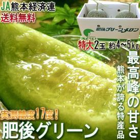 肥後グリーン 青肉メロン 熊本県産 JA熊本経済連 2玉入り 約4〜5kg 大玉限定 贈答可能 実測糖度17度超! 最高峰の甘さのブランドメロン!