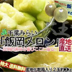 飯岡メロン 超大玉 約3kg 2玉 優品 千葉県産 JA千葉みどり 千葉特産品の飯岡タカミメロン! 優れた品質の高糖度フルーツをお届け!