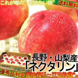スポット入荷! ネクタリン 約5kg 15~22玉入り 山梨県・長野県産 秀品 贈答可能 爽やかな酸味と豊かな甘み 暑い季節にぴったりのフルーツ