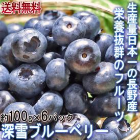 深雪ブルーベリー 約100g×6パック M~2Lサイズ 長野県産 JAながの 贈答可能 雪国で育てた甘み豊かな国産ブルーベリーをお届け!