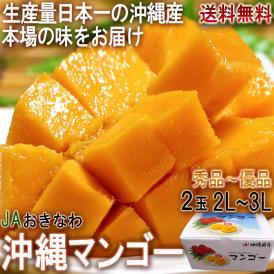 沖縄マンゴー 2玉入り 2L~3Lサイズ 秀品 贈答品 化粧箱入り 沖縄県産 JAおきなわ 抜群の味わいと濃厚な甘み!JA選果の高品質な完熟フルーツ