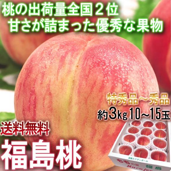 ふくしま桃 約3kg 10~15玉入り 特秀品~秀品 福島県産 贈答品 豊富な甘みと美しい果皮を持つギフト最適なもも!01