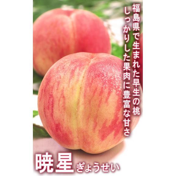 ふくしま桃 約3kg 10~15玉入り 特秀品~秀品 福島県産 贈答品 豊富な甘みと美しい果皮を持つギフト最適なもも!02