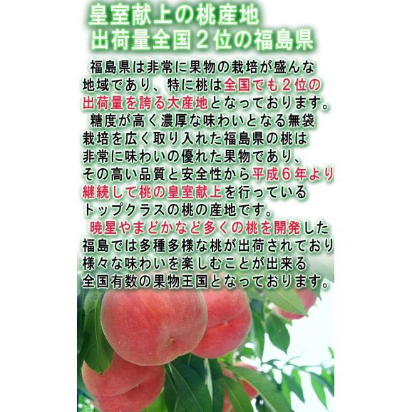 ふくしま桃 約3kg 10~15玉入り 特秀品~秀品 福島県産 贈答品 豊富な甘みと美しい果皮を持つギフト最適なもも!03