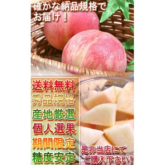 ふくしま桃 約3kg 10~15玉入り 特秀品~秀品 福島県産 贈答品 豊富な甘みと美しい果皮を持つギフト最適なもも!05