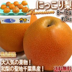 にっこり梨 プレミアム 約5kg 8~16玉入り 秀品限定 千葉県産 テレビでも放送された人気の和梨!酸味の少ない高糖度のフルーツ