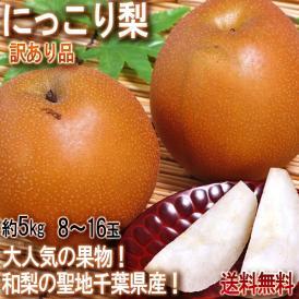 にっこり梨 約5kg 8~16玉前後 訳あり品 千葉県産 テレビでも放送された人気の和梨!酸味の少ない高糖度のフルーツ