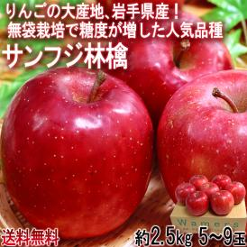サンふじ林檎 約2.5kg 5~9玉 早生りんご 岩手県産 無袋栽培で糖度が向上した早生フジ!強い甘みと程よい酸味