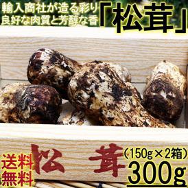 松茸 まつたけ 約300g 中国産 香り豊かな秋の味わいを、お得な価格でご配送!海外産の中でも優れた品質