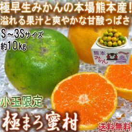 極まろ蜜柑 グリーン温州みかん 約10kg S~3Sサイズ 小玉限定 熊本県産 個人農家産中心 極早生ミカンの聖地、熊本産!緑の果実に豊富な果汁と爽やかな甘さ