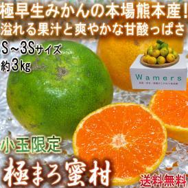 極まろ蜜柑 グリーン温州みかん 約3kg S~3Sサイズ 小玉限定 熊本県産 個人農家産中心 極早生ミカンの聖地、熊本産!緑の果実に豊富な果汁と爽やかな甘さ