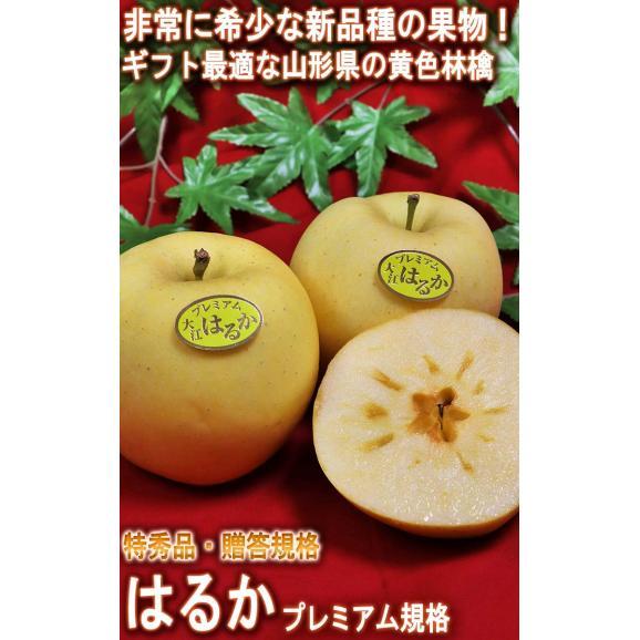 はるか 蜜入り黄林檎 約3kg 8~12玉入り 特秀品 山形県産 贈答品 JAさがえ西村山 高い糖度と酸味の少ない果肉!国内屈指の林檎産地で育った味わい抜群のリンゴ02