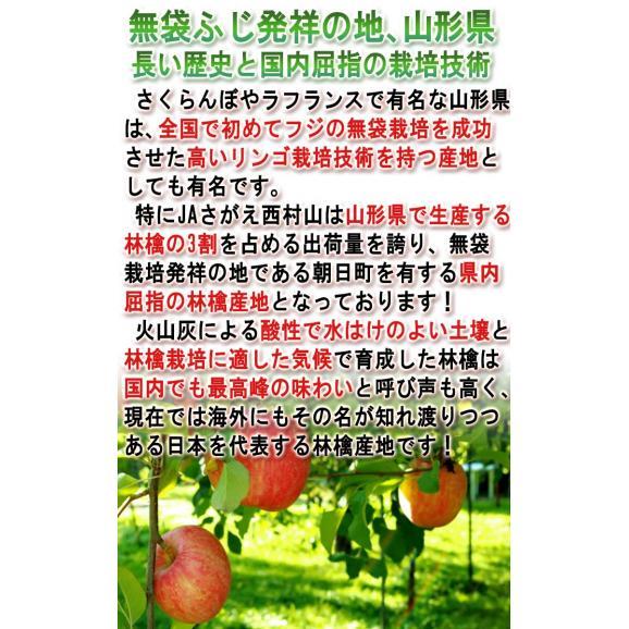 はるか 蜜入り黄林檎 約3kg 8~12玉入り 特秀品 山形県産 贈答品 JAさがえ西村山 高い糖度と酸味の少ない果肉!国内屈指の林檎産地で育った味わい抜群のリンゴ03