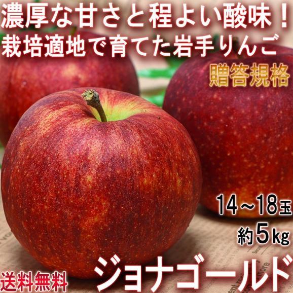 ジョナゴールド 赤りんご 約5kg 14~18玉 岩手県産 贈答規格 江刺産中心 実測糖度14度の高糖度!ジューシーな果肉と濃厚な味わいの林檎01