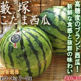 藪塚こだま西瓜 温室スイカ 約3~4kg 2~5玉 群馬県産 贈答規格 JA太田市 温室で育てた甘さ際立つブランドすいか!