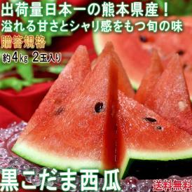 黒こだまスイカ 約4kg 2玉入り 贈答規格 熊本県産 色の濃い果皮と抜群の甘さ!西瓜の大産地が誇る旬の味