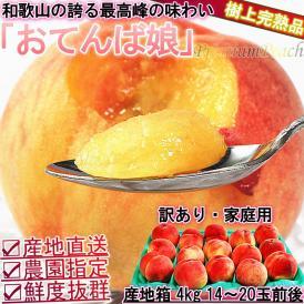 産地直送 桃 和歌山産 おてんば娘 約4kg 14~20玉 訳あり わけあり 家庭用 日本屈指の桃産地で育てた抜群の味と鮮度! 白桃 白鳳