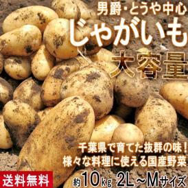 じゃがいも 男爵・とうや中心 約10kg 2L~Mサイズ 千葉県産 大容量 様々なお料理に使えるお得な国産野菜!