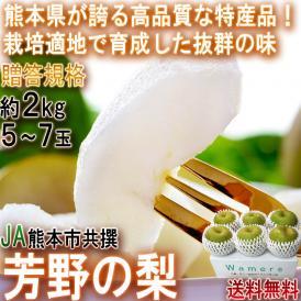 芳野の梨 幸水 約2kg 5~7玉 熊本県産 贈答規格 JA熊本市共撰 豊富な果汁と甘さでお中元に人気の特産品!高い栽培技術で確かな美味しさ