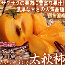 太秋柿 たいしゅうかき 約3.5kg 9~16玉入り 茨城県産中心 贈答規格 サクサクの果肉と豊富な果汁!高糖度の完全甘柿