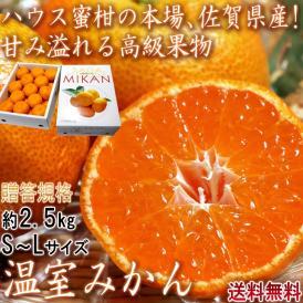 温室みかん ハウス栽培 約2.5kg S~Lサイズ 佐賀県産 贈答規格 美しい果皮と高糖度の高級みかん! ハウス蜜柑の聖地、佐賀のミカン