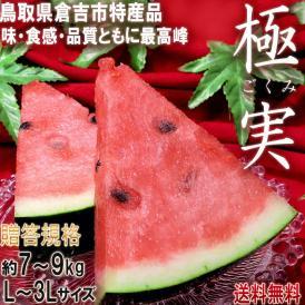 極実スイカ 約7~9kg 1玉入り 鳥取県産 贈答規格 特産品すいか お中元に最適な抜群の味と品質!倉吉西瓜のトップブランド