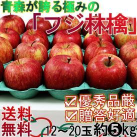 りんご フジ 早生ふじ 約5kg 12~20玉 贈答規格 青森県産 赤特等級・センサー