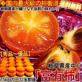 富有柿 ふゆうがき 約7.5kg 20~32玉前後 秀品~優品 岐阜県産中心 最も生産量の多い人気の柿!やわらかな食感に強い甘みと豊富な果汁