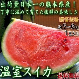 温室スイカ 赤肉西瓜 約5~6kg 1玉入り 熊本県産 贈答規格 生産量日本一の大産地、熊本で育てた抜群の味!甘さと食感の美味しいギフトすいか
