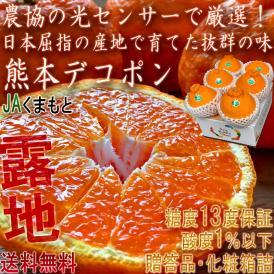 デコポン 露地栽培 しらぬい 5~7玉 熊本県産 贈答規格 化粧箱入り JAくまもと 光センサー選果・糖度13度以上限定 糖度保証で確かな味!栽培適地で育てた本場の美味しさ