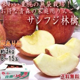 サンふじ りんご 約3kg 8~15玉 青森県産 訳あり品 無袋栽培で濃厚な味と高糖度!美味しさ重視のあおもり林檎