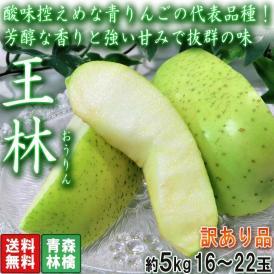 王林 おうりん 加工用 約5kg 16~22玉 訳あり品 青森県産 糖度センサー選果済み 酸味控えめで高糖度の青りんご!出荷量トップクラスの人気品種