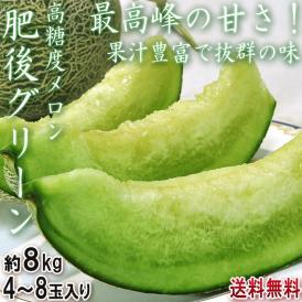 肥後グリーン 青肉 高糖度メロン 約8kg 4~8玉入り 実測糖度17度超!最高峰の甘さを誇るブランド果物