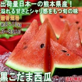 黒こだまスイカ 約8~10kg 3~8玉入り 贈答規格 熊本県産 色の濃い果皮と抜群の甘さ!西瓜の大産地が誇る旬の味