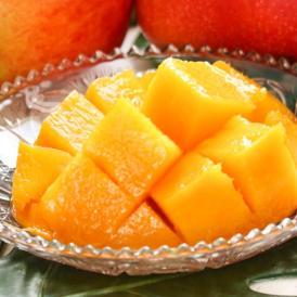 完熟マンゴー 1玉入り L~3Lサイズ 佐賀県産 贈答企画 温室栽培 抜群の味と甘さの高級フルーツ!