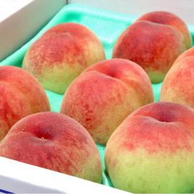 桃 約1.8kg 5~9玉入り 熊本県産 贈答規格 甘み豊かな旬の桃!季節の品種を厳選