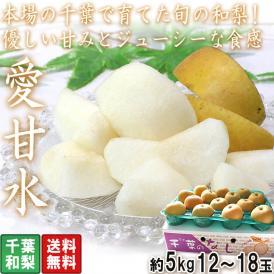 愛甘水 千葉梨 約5kg 12~18玉 千葉県産 ナシの本場で育てた旬のフルーツ!優しい甘さとジューシーな食感