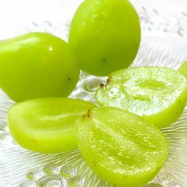 送料無料 お中元にも最適な高級果物!はじける食感と高い糖度