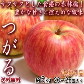 つがる 小玉りんご 約5kg 20~28玉 山形・青森県産中心 訳あり品 手軽に使えるお得なこだま林檎!酸味の少ない人気品種