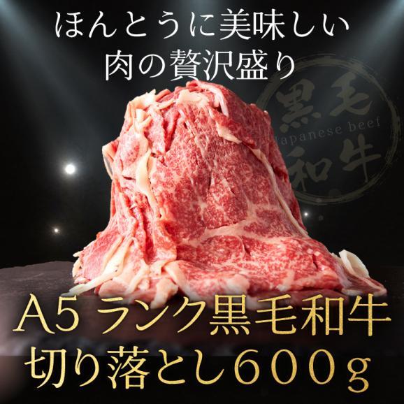 【送料無料】A5ランク 黒毛和牛 切り落とし 600g  形・部位不揃い  冷凍 飲食店支援01