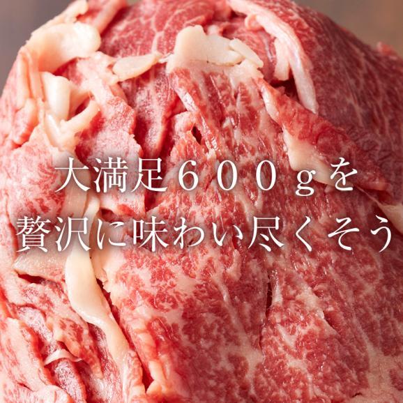 【送料無料】A5ランク 黒毛和牛 切り落とし 600g  形・部位不揃い  冷凍 飲食店支援03