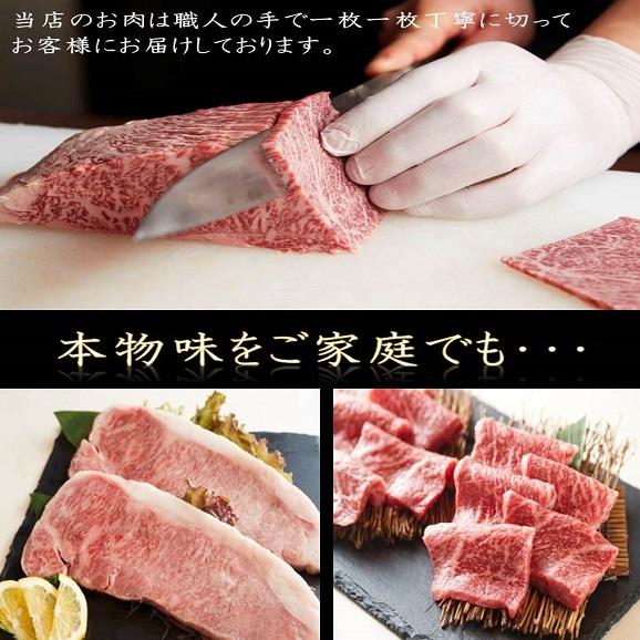 【送料無料】黒毛和牛A5赤身ステーキ 250g(125g×2)04