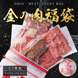 自分へ褒美!金の肉福袋! 黒毛和牛 A4 A5等級を含む計1.5kg(300g×5種類)