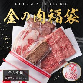 【29 肉の日割引】金の肉福袋! 黒毛和牛 A4 A5等級を含む計1.5kg(300g×5種類)【送料無料(一部地域除く)】
