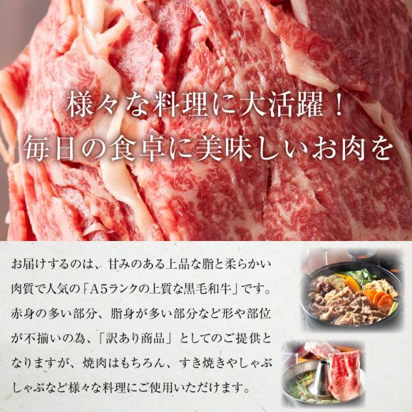 【50セット限定!早い者勝ち!】高級肉ギフトが当たるかも!?肉のシルバーガチャにチャレンジ!!【送料無料】02