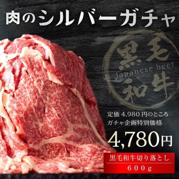【50セット限定!早い者勝ち!】高級肉ギフトが当たるかも!?肉のシルバーガチャにチャレンジ!!【送料無料】04